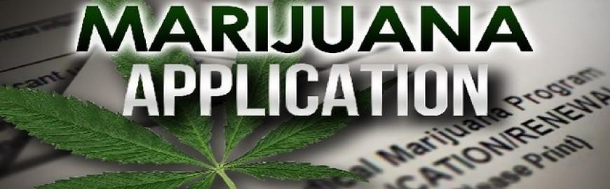 Applications for marijuana business
