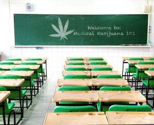 Marijuana school