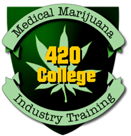 Marijuana business institute