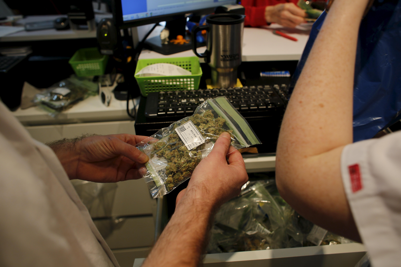 Cannabis distribution license
