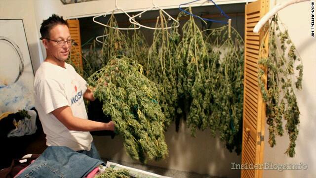Online marijuana education