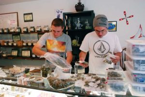 Dispensary business permits